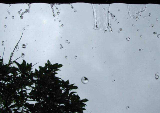 雨どいの破損に繋がるもの